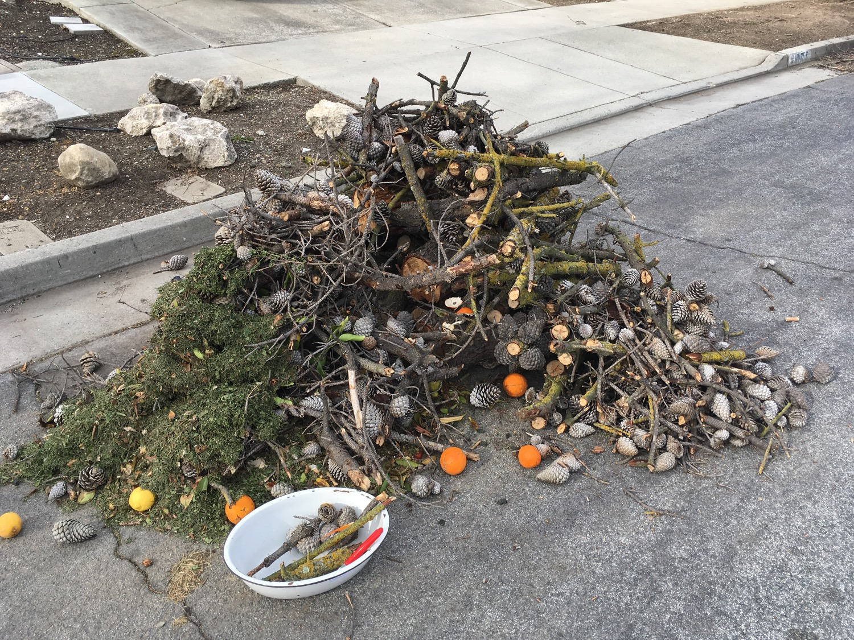 yard waste, Santa Teresa neighborhood