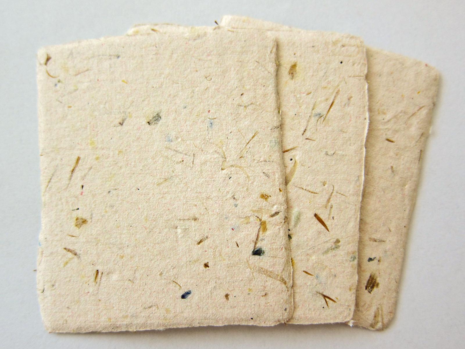 plantable seed paper.jpg