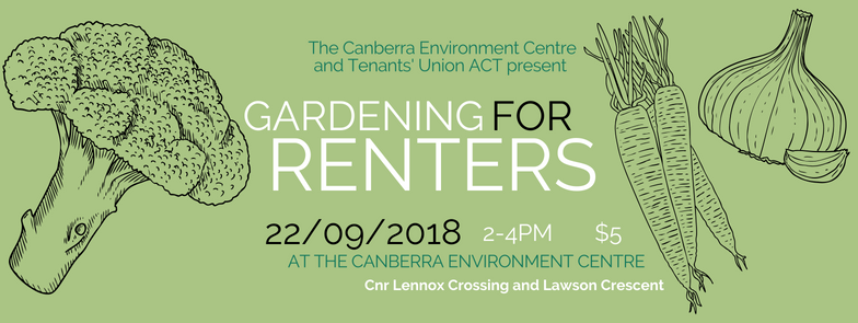Gardening for renters banner.png