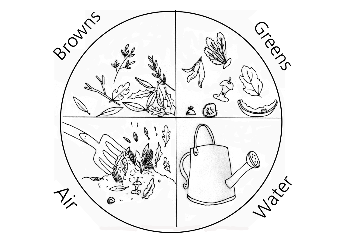 Compost needs: browns, (carbon) greens, (nitrogen), air and water.