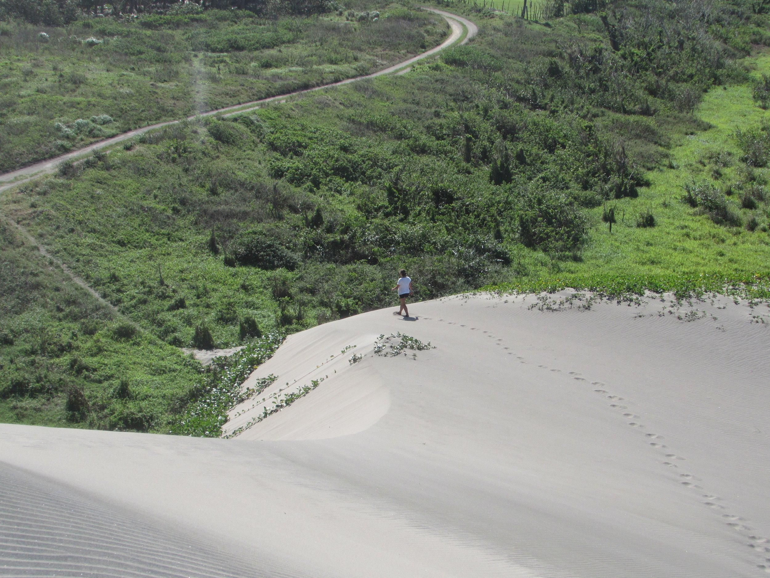 It felt otherworldly to walk down the wind-whipped dunes.