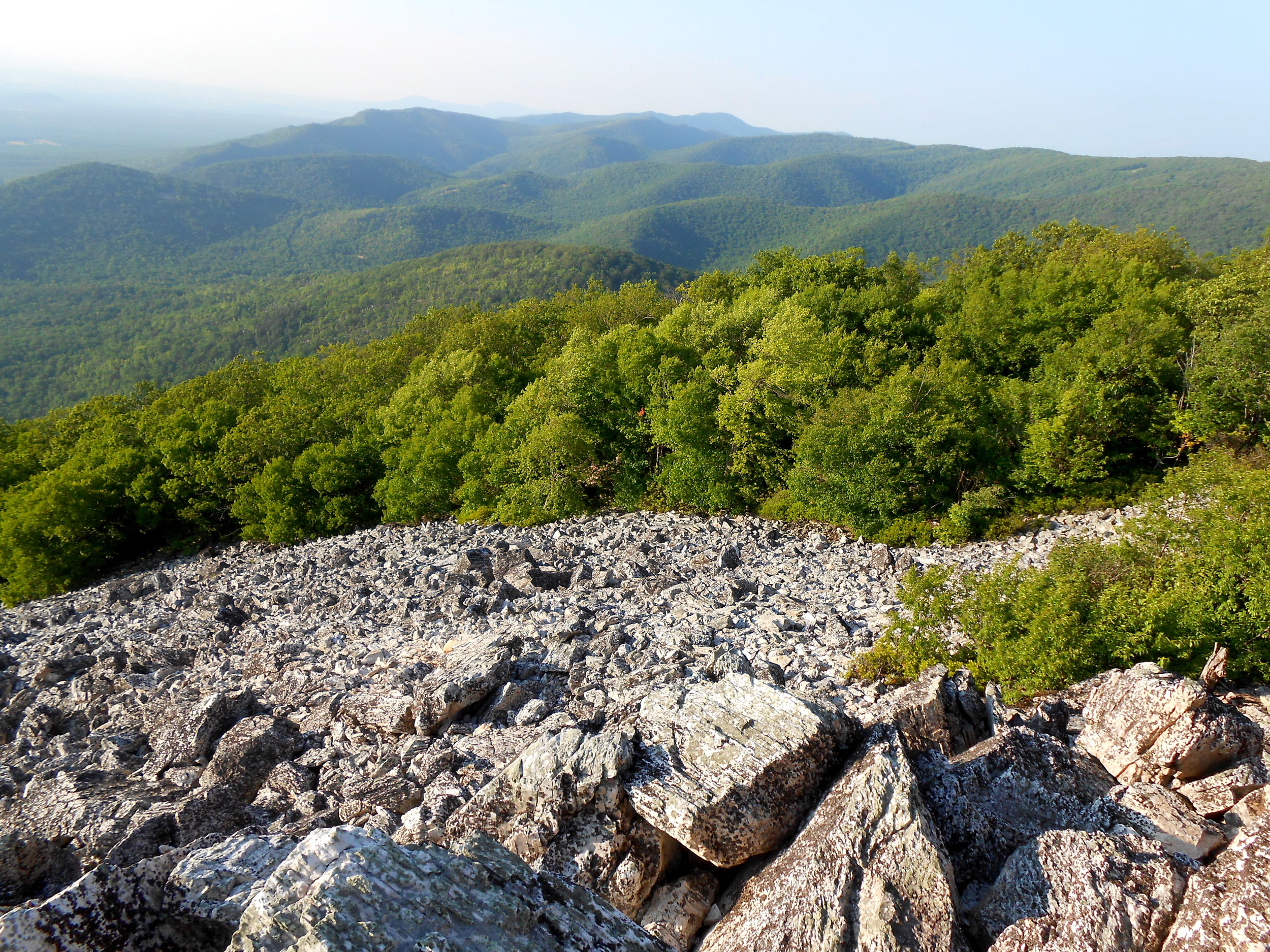 View from the top of Turk Mountain.
