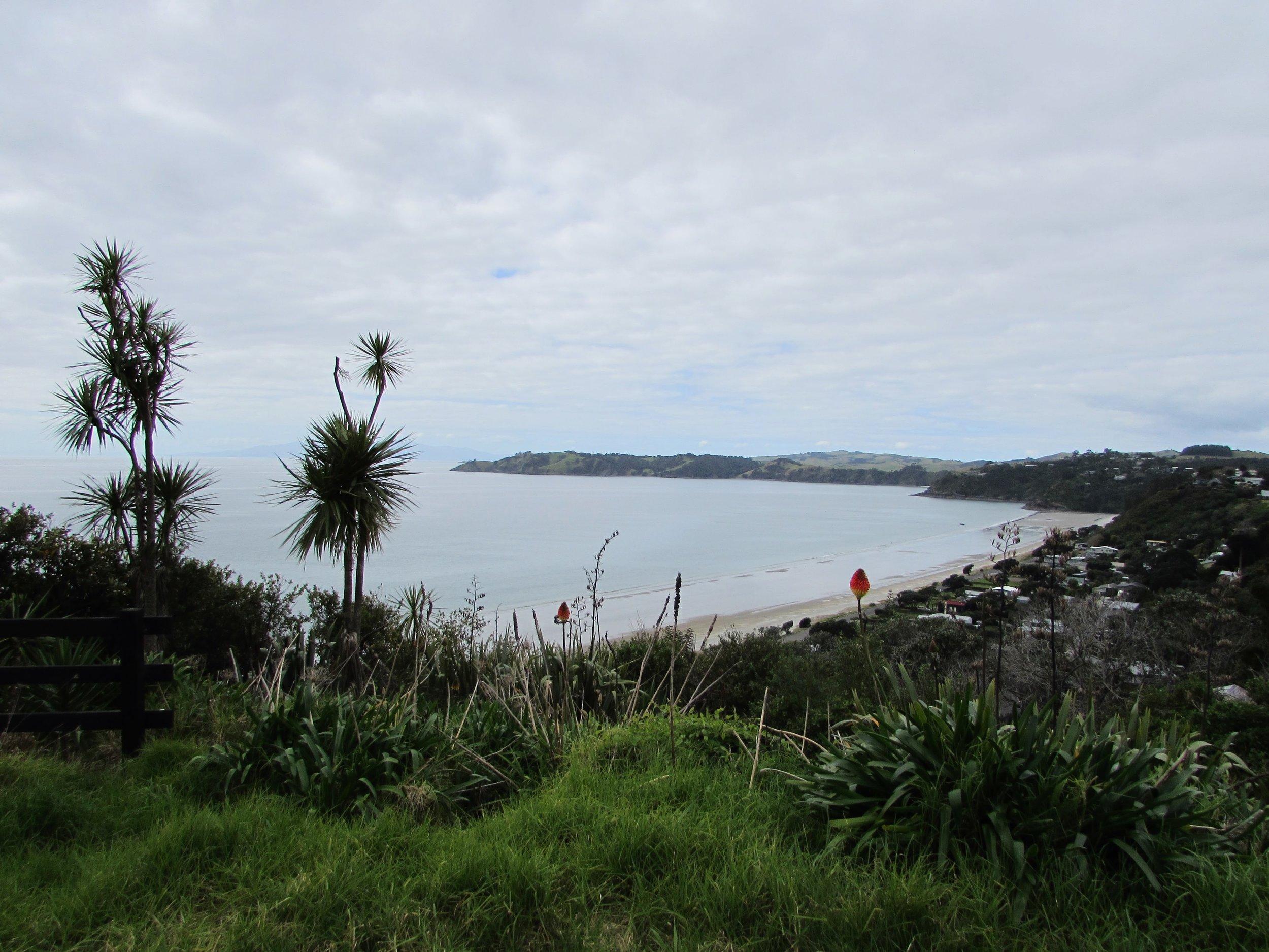 Waiheke's Onetangi Beach, viewed from the roadside above.