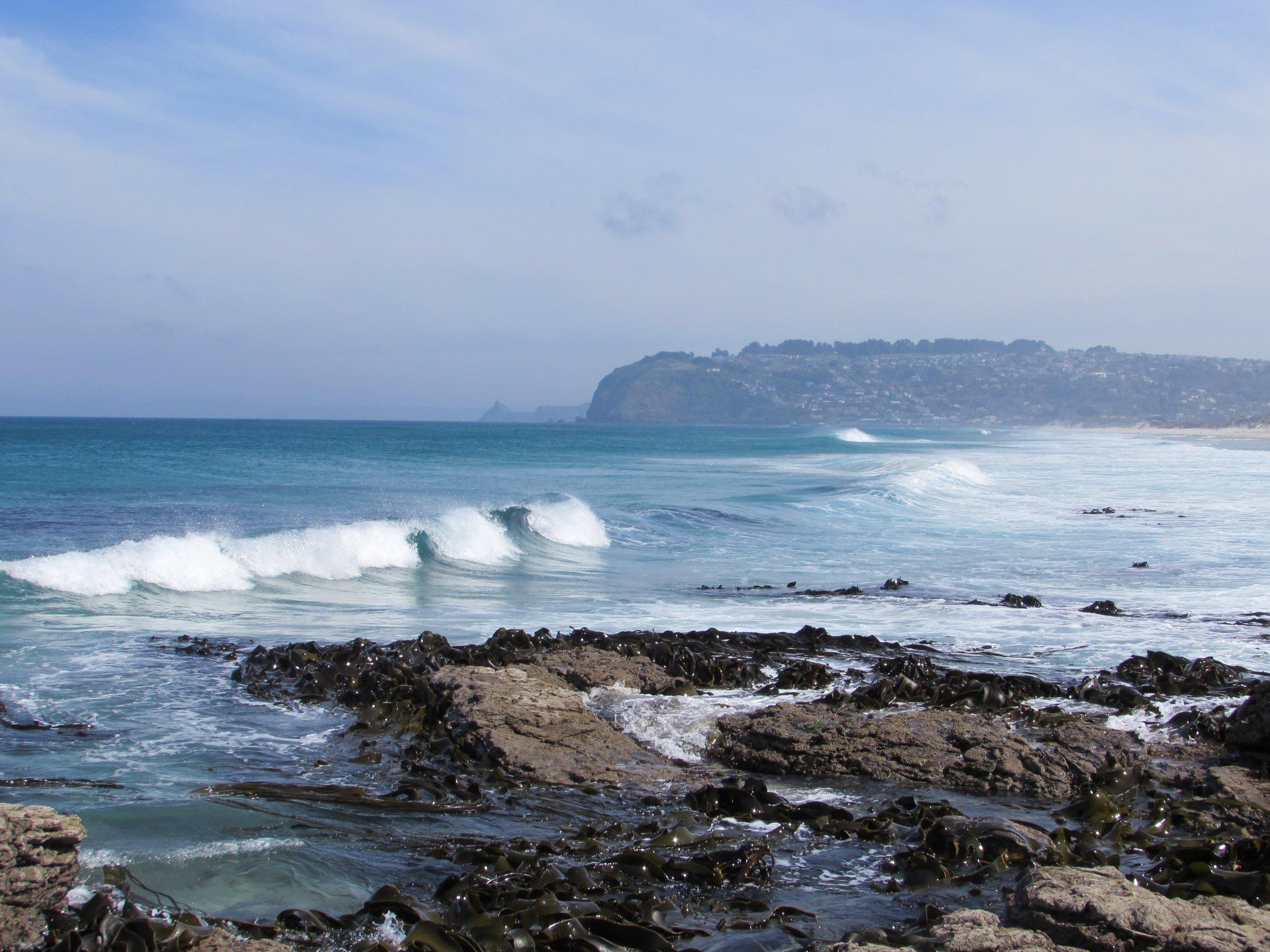Southern waves of St. Kilda, Dunedin.