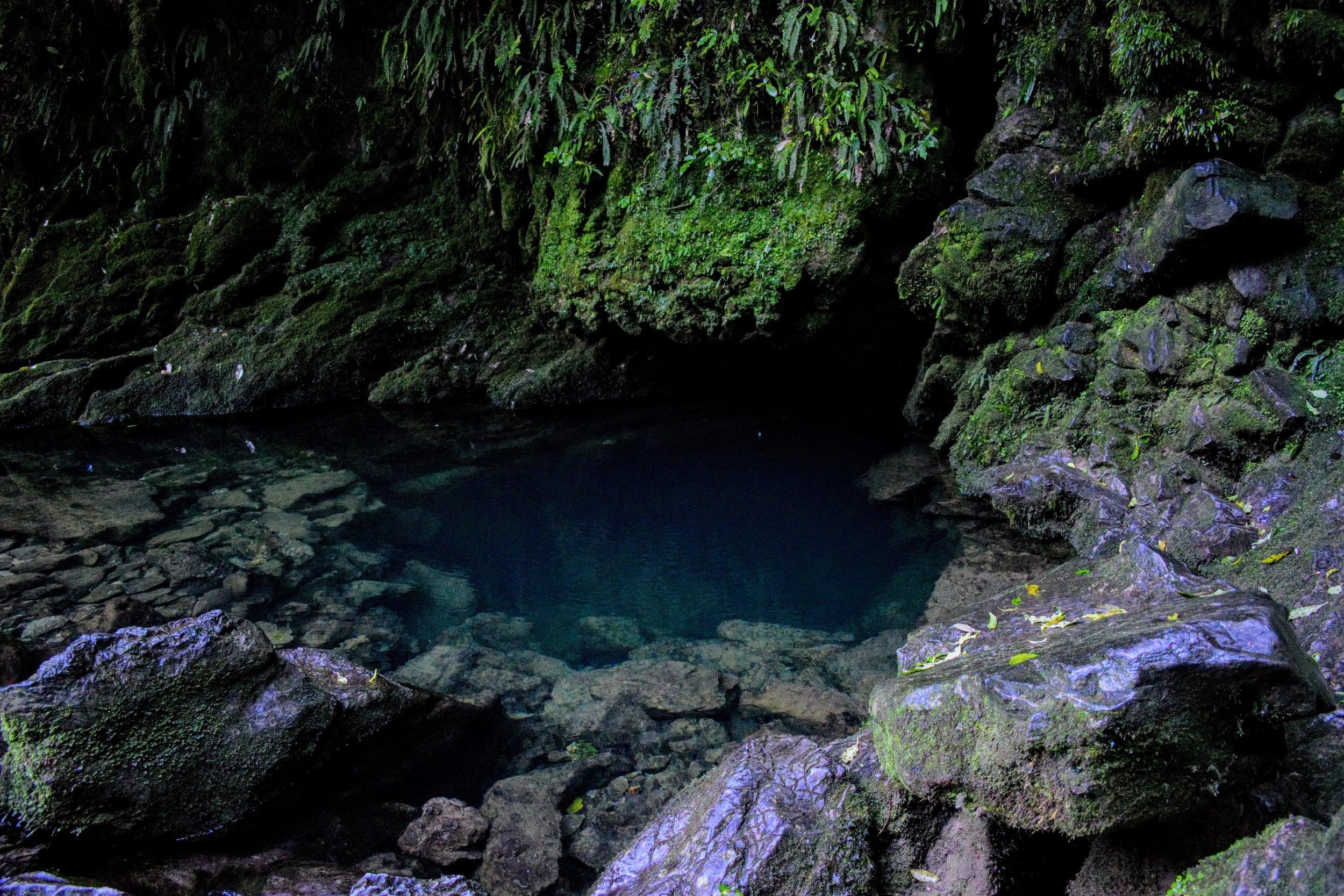 The Riwaka Resurgence, a sacred Maori site near Takaka Hill.