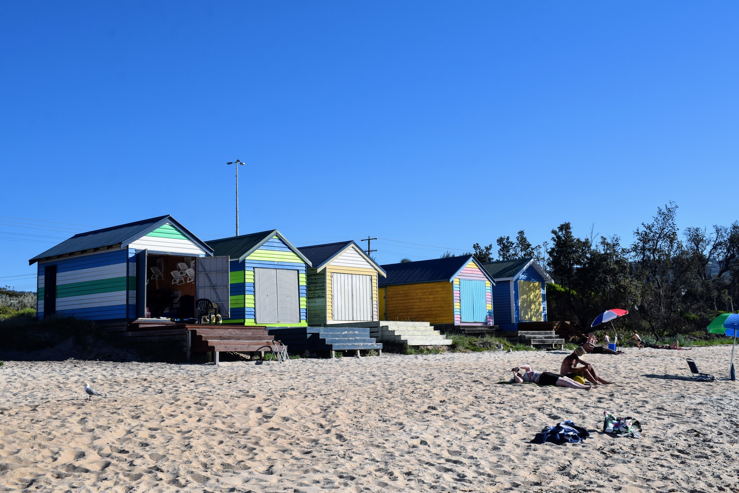 a row of boatsheds in dromana, victoria