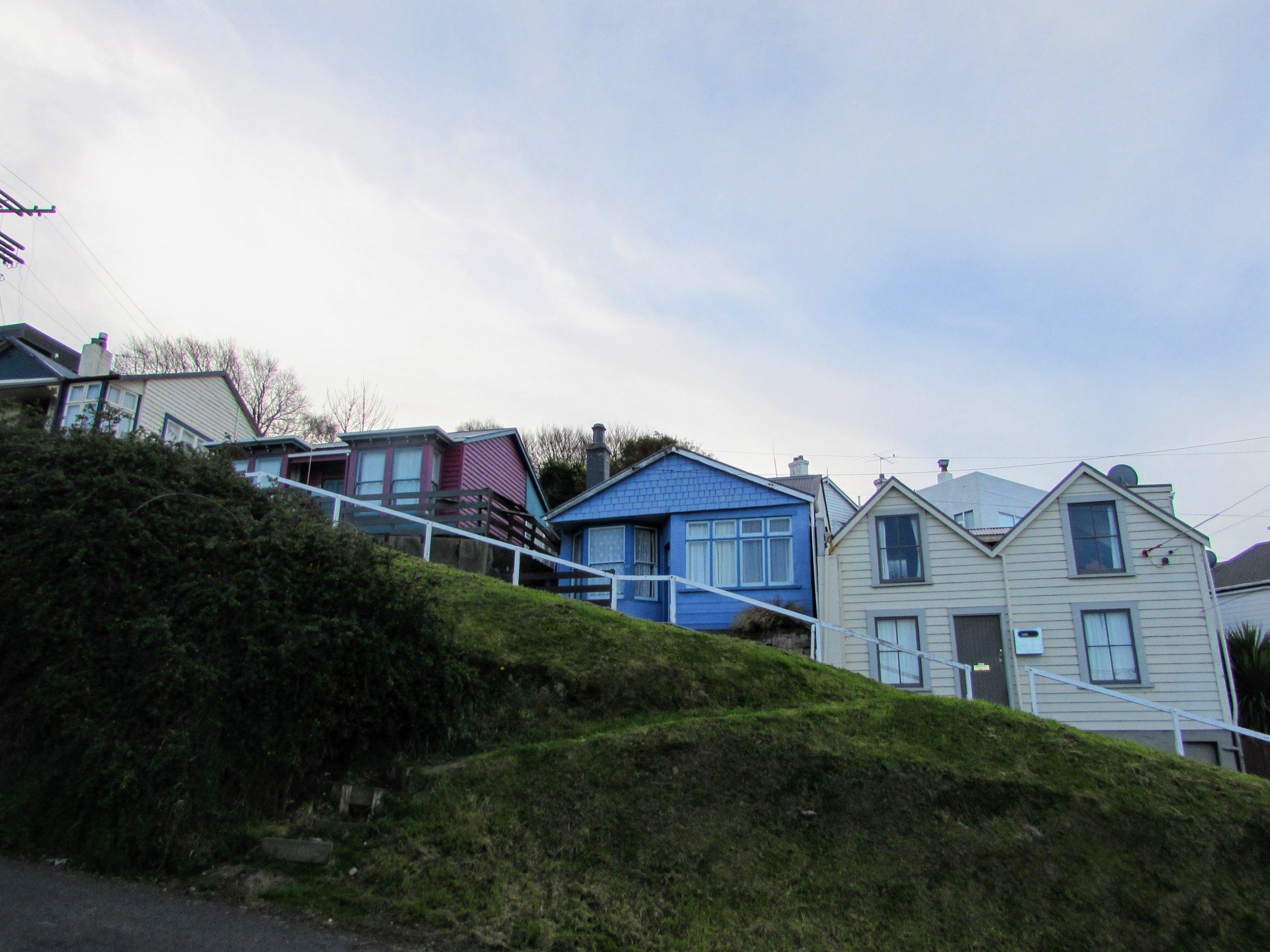 Homes on a steep hill in Dunedin, NZ