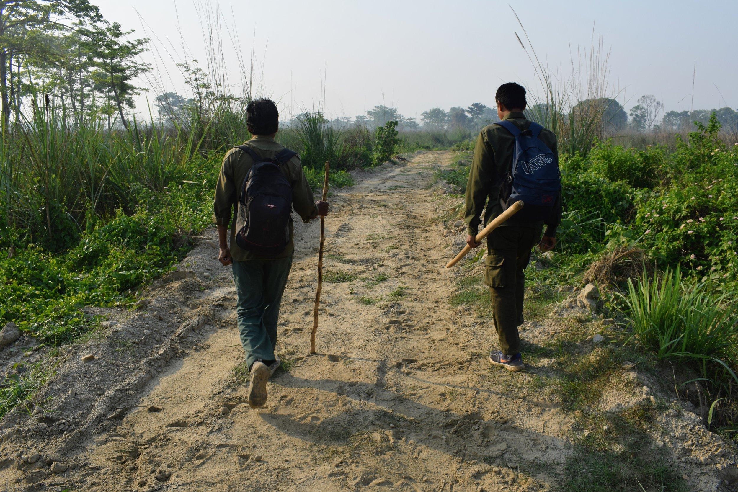walking safari chitwan national park one