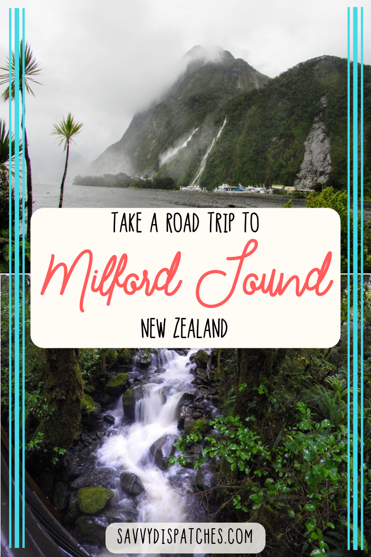 Taking a road trip on New Zealand's South Island from Te Anau to Milford Sound is the best way to experience Fiordland National Park. | New Zealand Travel on a Budget | Self Drive Milford Sound | South Island Road Trip #newzealand
