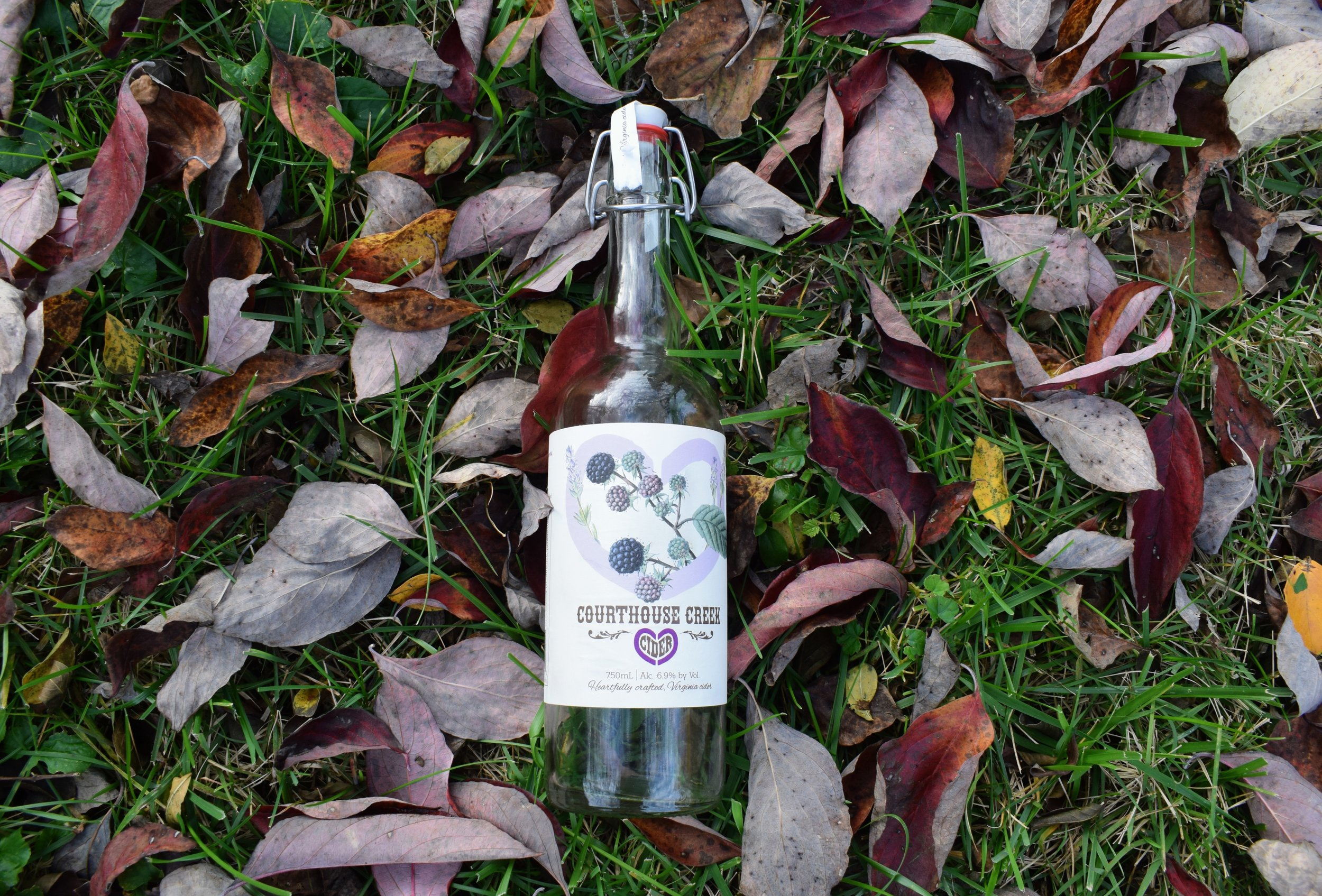 Do the leaves in this picture hide the fact that I took this photo  after  my friends and I finished the whole bottle?