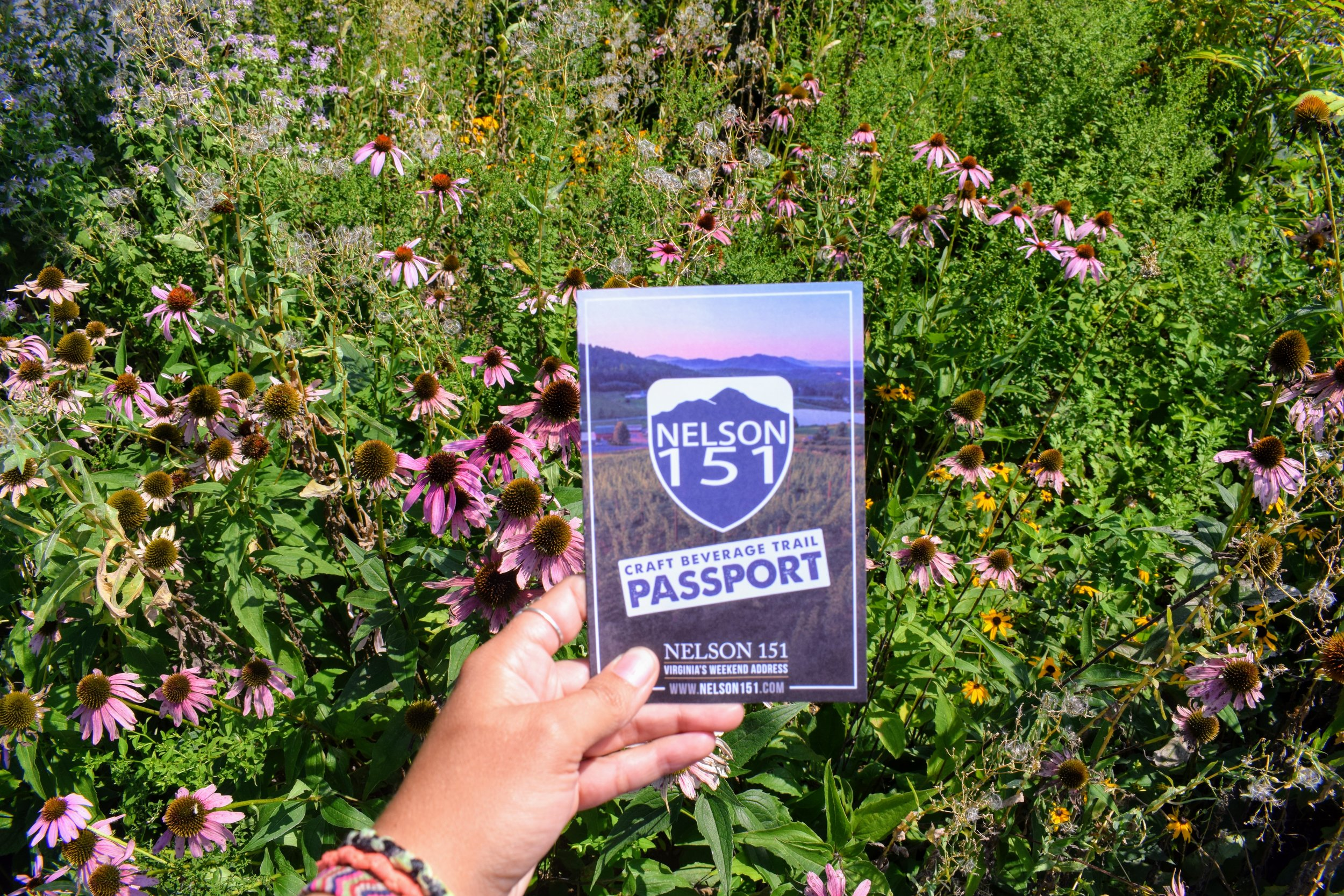 My 151 Passport - fill it all out and get a free souvenir t-shirt!