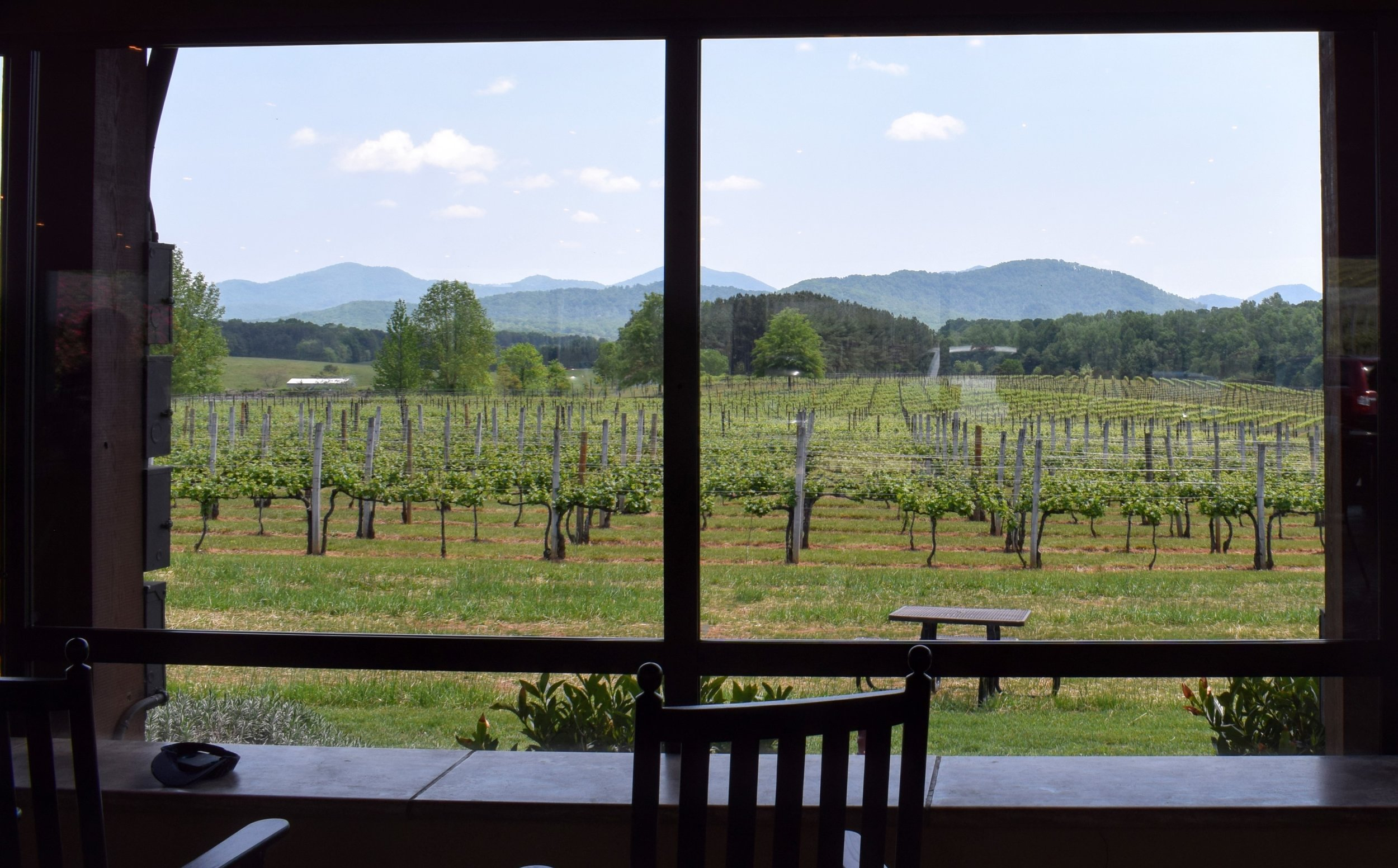 Afton Mountain Vineyards as seen from inside their Pavilion.