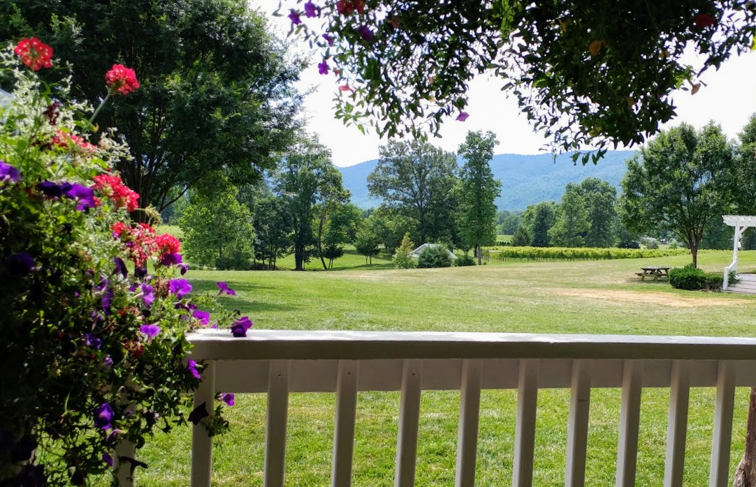 One of the many lovely views to be had from Veritas' tasting room.