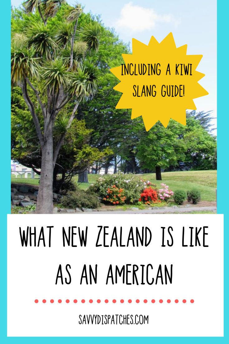 Navigating New Zealand as an American // From USA to New Zealand // New Zealand WHV