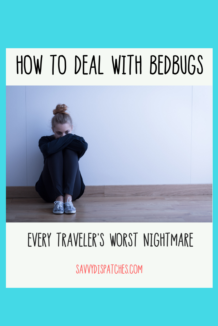Dealing with Bed Bugs while Traveling // Bed Bug Help