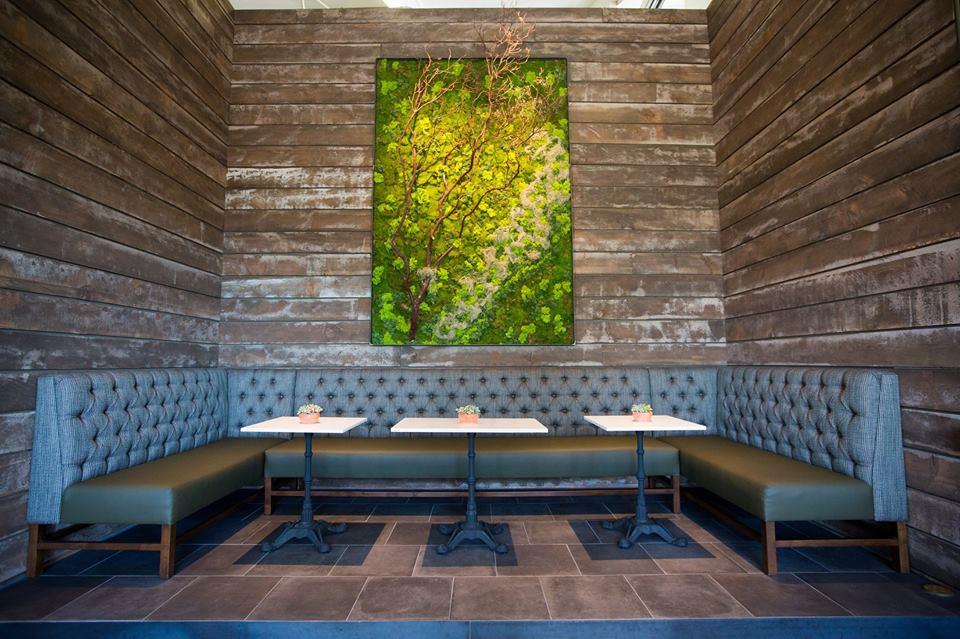 Calmére Estate Winery, Napa Valley | Lauren Pique Designs