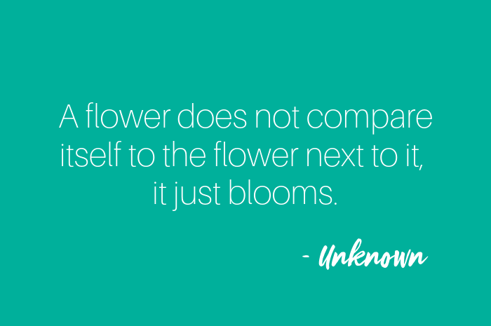 A flower does not compare itself to the flower next to it, it just blooms.png