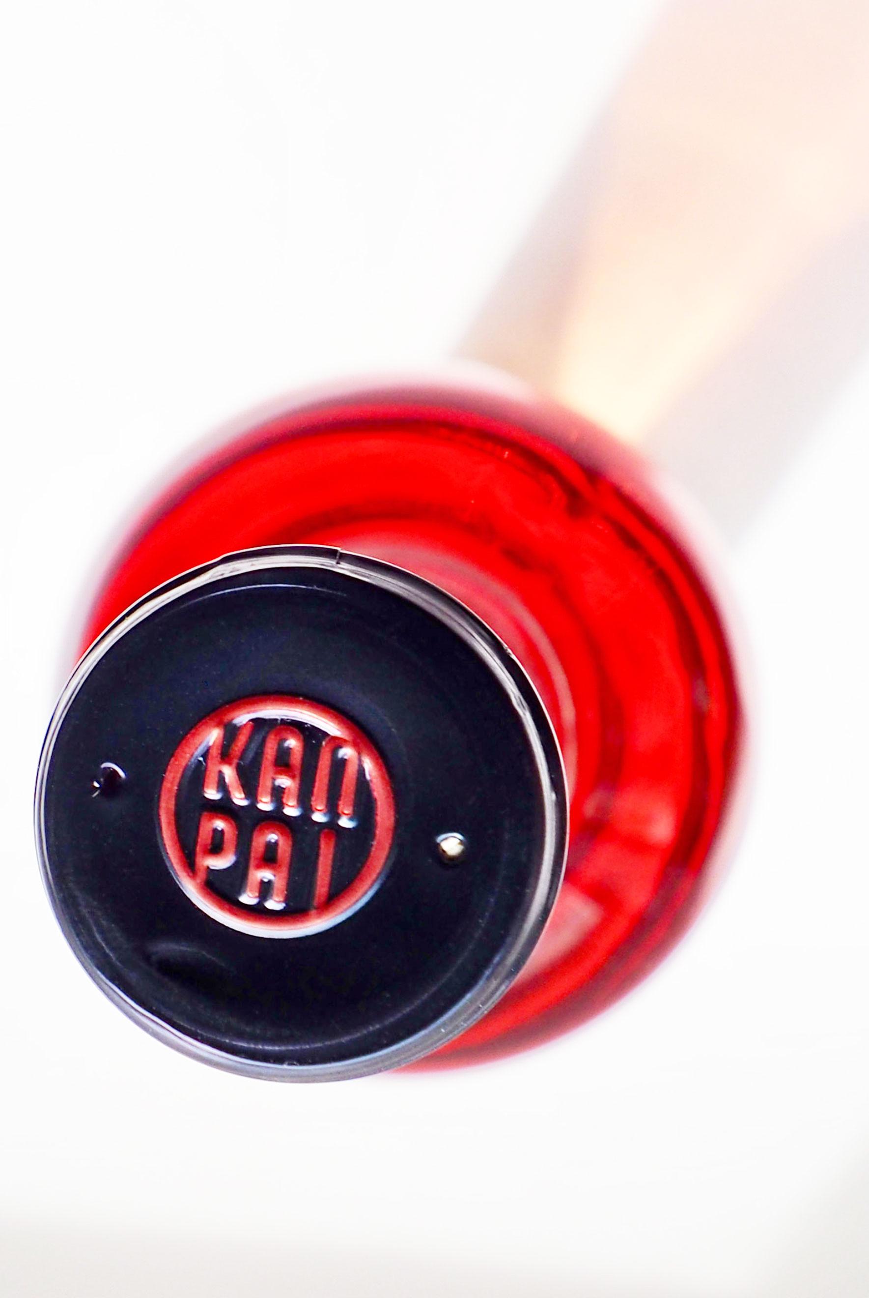 kanpai_logo-2.jpg