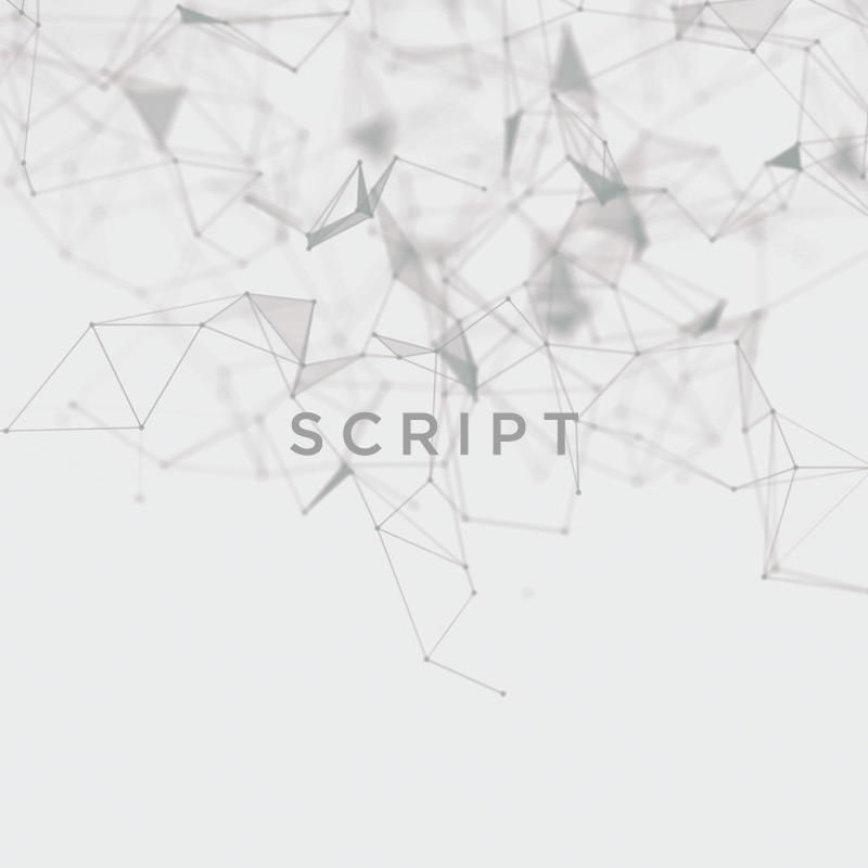 /skript/   noun   Scripts are known as handwriting as distinct from print; written characters.