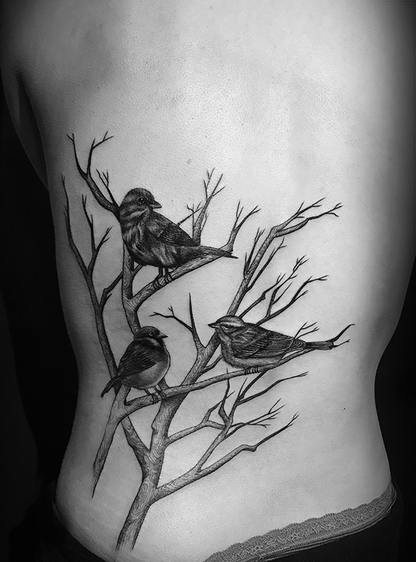 back-birdsbranch.jpg