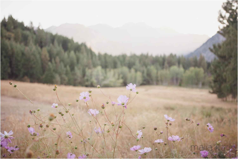 Mountain-Home-Lodge-Wedding-Maija-Karin-Photography_0055.jpg
