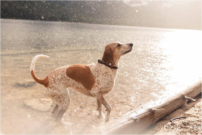 Stanley-Lake-Engagement-portraits-Maija-Karin-Photography_0011.jpg