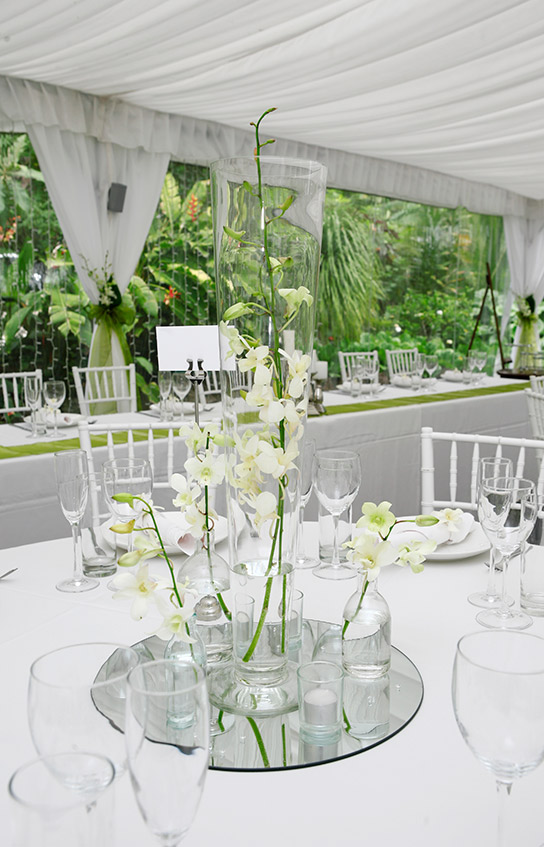 white-orchid-centrepiece-wedding-flowers-auckland.jpg