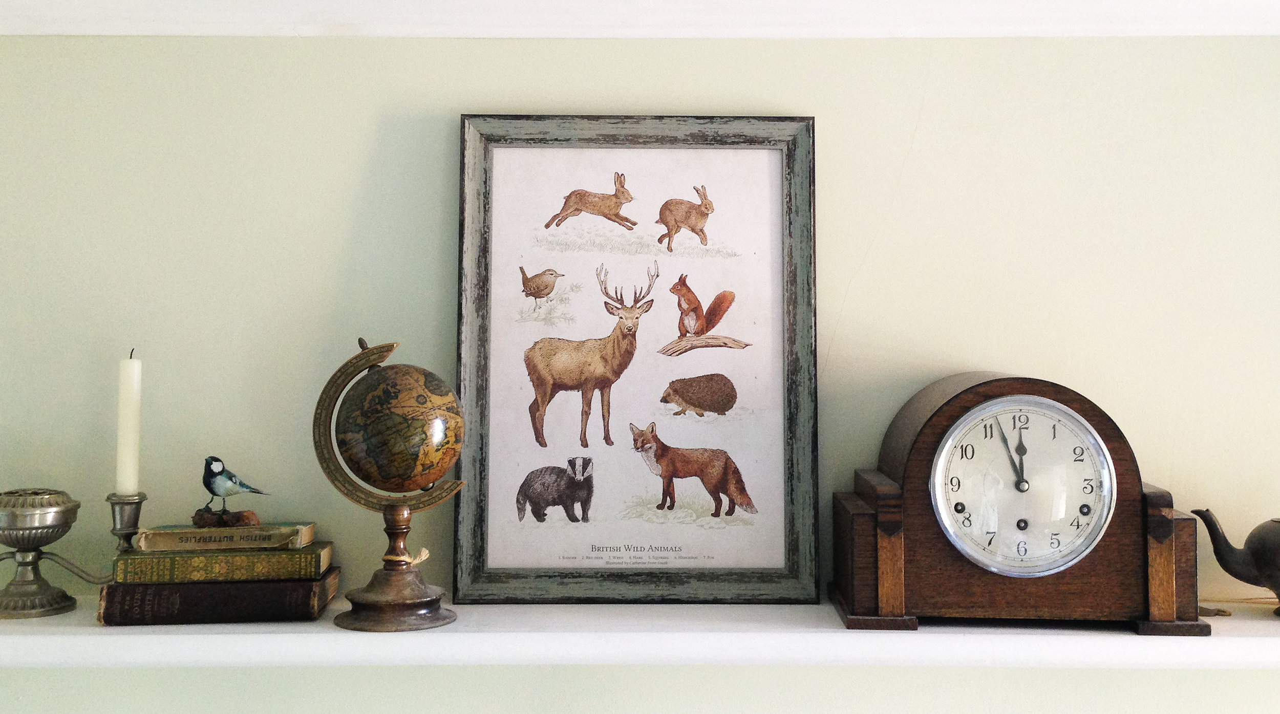 British Wild Animals A3 Art Print