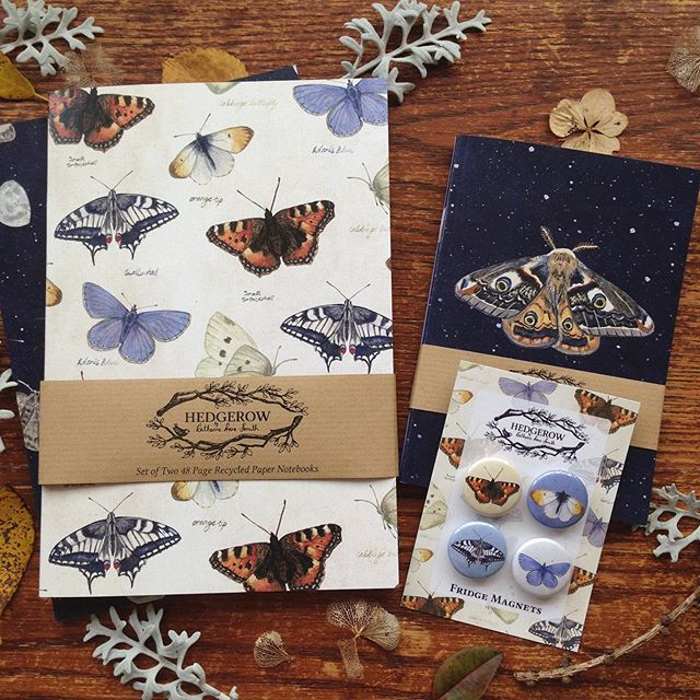 I just love seeing all the butterflies at this time of year! It always amazes me how many beautiful colours and patterns in their wings there are! Butterfly and moth notebooks, magnets and pencil cases are all available in my shop. Follow the link in bio to head over and take a look...🦋 #butterflies #moth #moths #nightsky #notebooks #naturelovers #butterflygarden #naturegifts #makersgonnamake #heytheremaker #illustration #natureillustration #craftsposure #entomology #entomologist #butterflycollection #surfacepatterndesign #surfacepatterndesigner #hedgerowdesigns