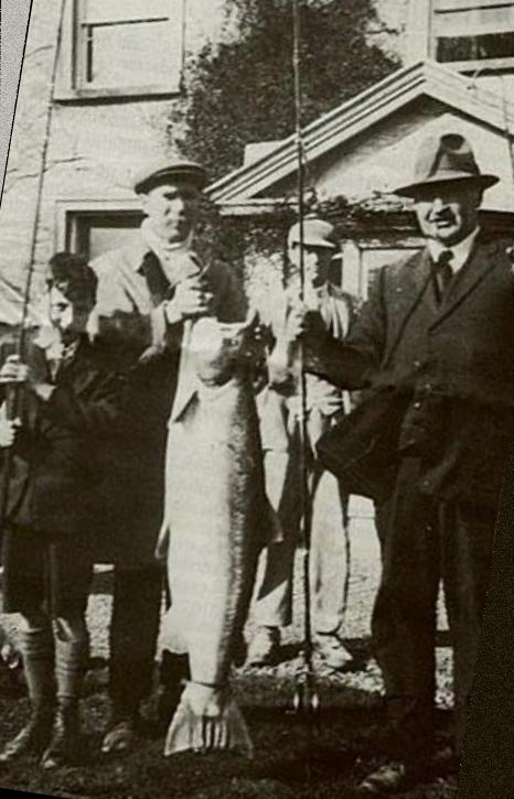 Nore 1930 48.5lbs (22 kilo)