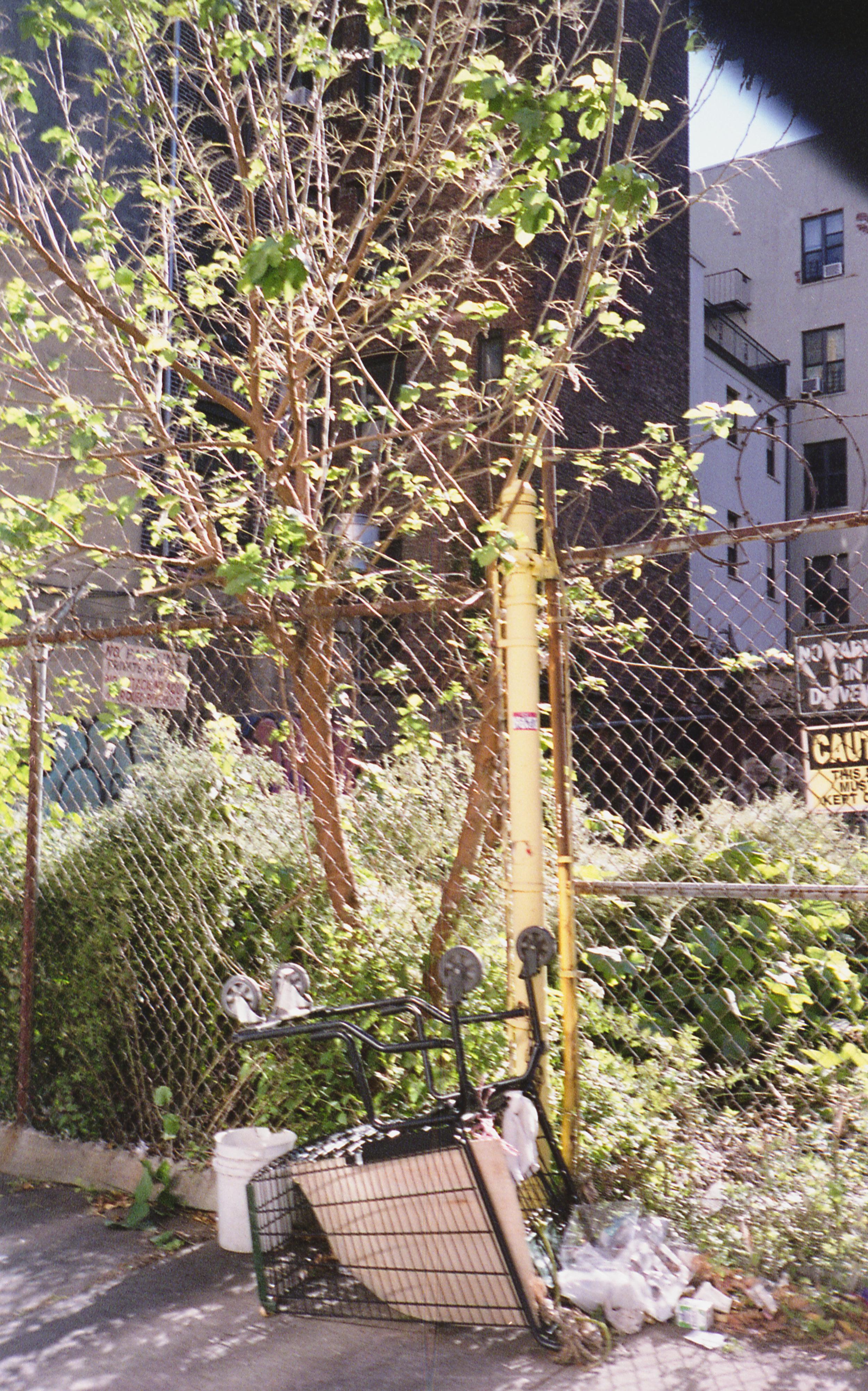 Curriefilm(PRO4FILM)405.jpg