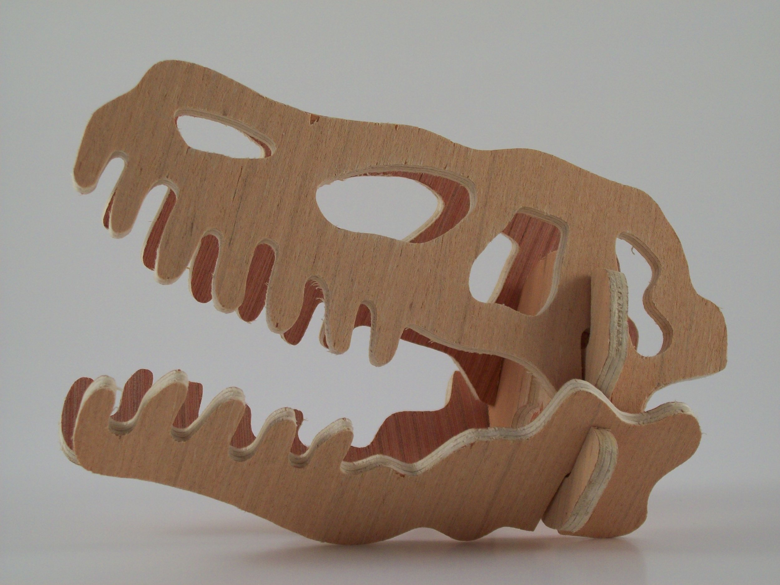 Dalton CNC Portfolio. Wooden framework for 3D T-Rex Skull cutout by CNC Routing Machine.
