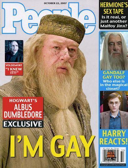 Dumbledore-is-Gay-harry-potter.jpg