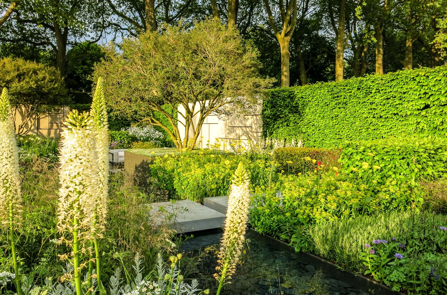 RHS Chelsea Show Garden.... Inspiration for my gardening projects comes from learning from the best designers in the country.