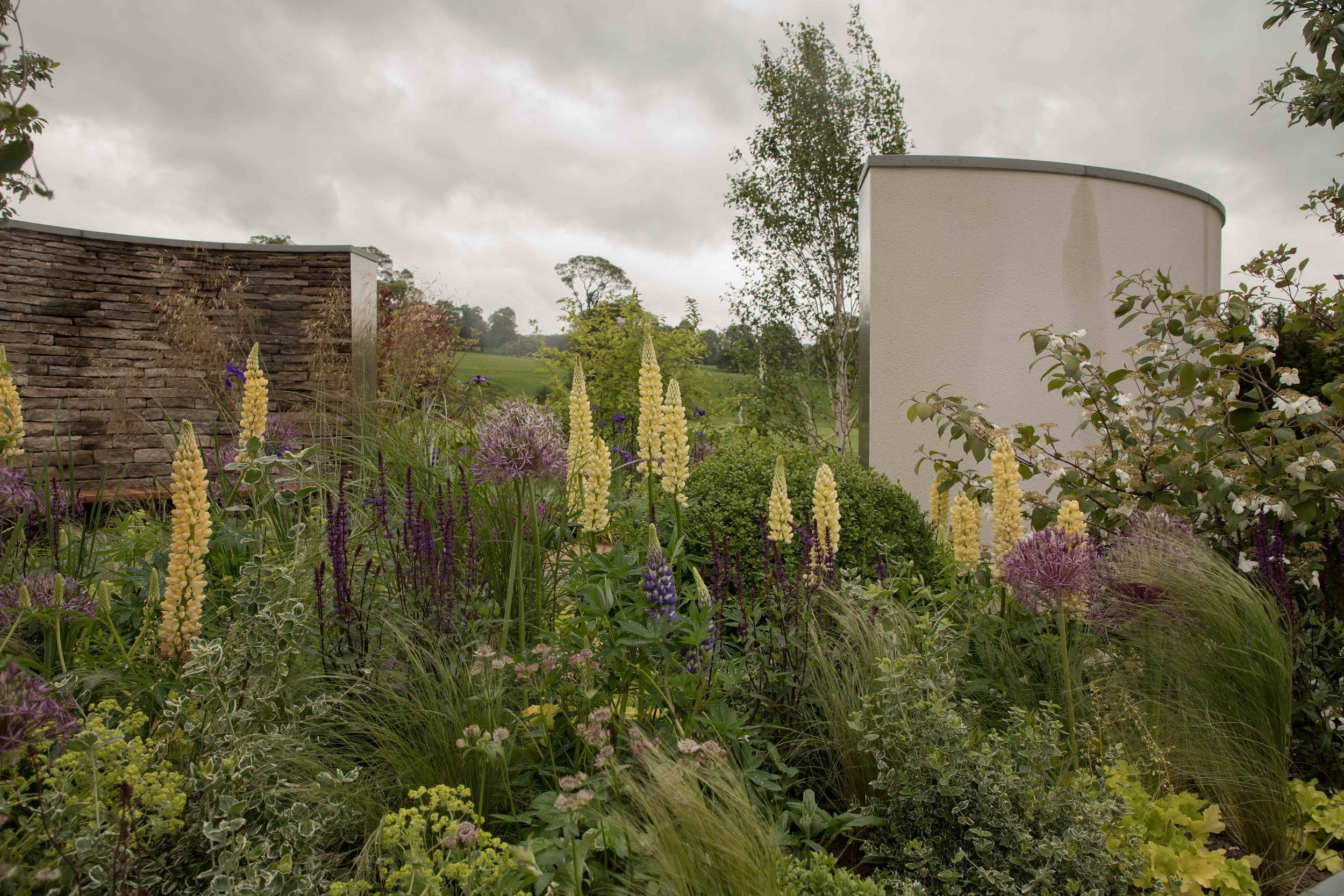 Even with the cloudy weather this garden and its planting looked spectacular. Cruse Bereavement Care - 'A Time for Everything' by designer Neil Sutcliffe