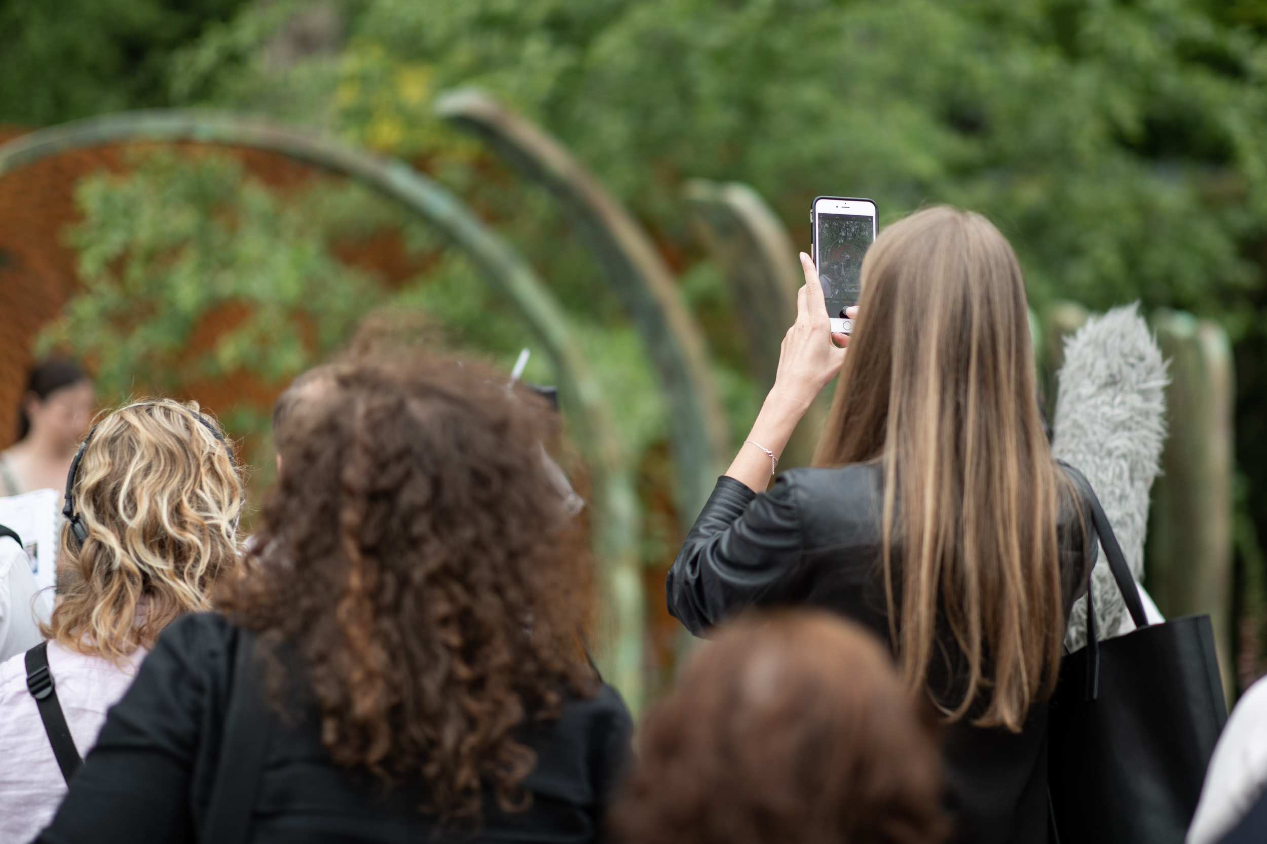 Capturing the Chelsea Flower Show