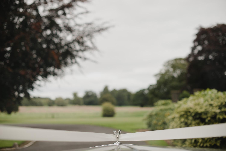 luttrellstown-castle-ireland-wedding-photographer-63.jpg
