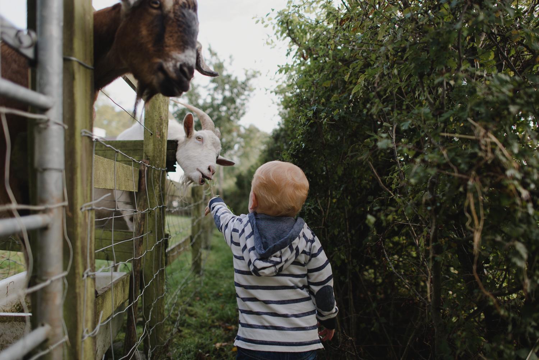 Northern-ireland-family-photographer-37.jpg
