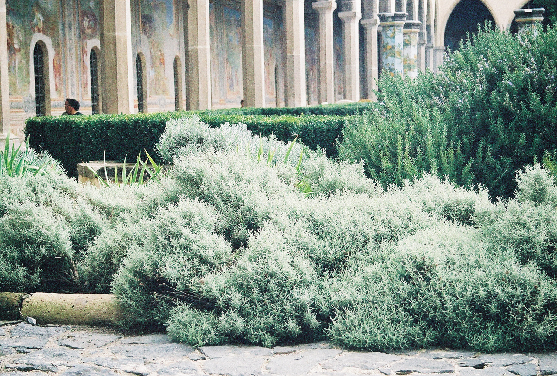santa-chiara-cloister-garden-3.jpg