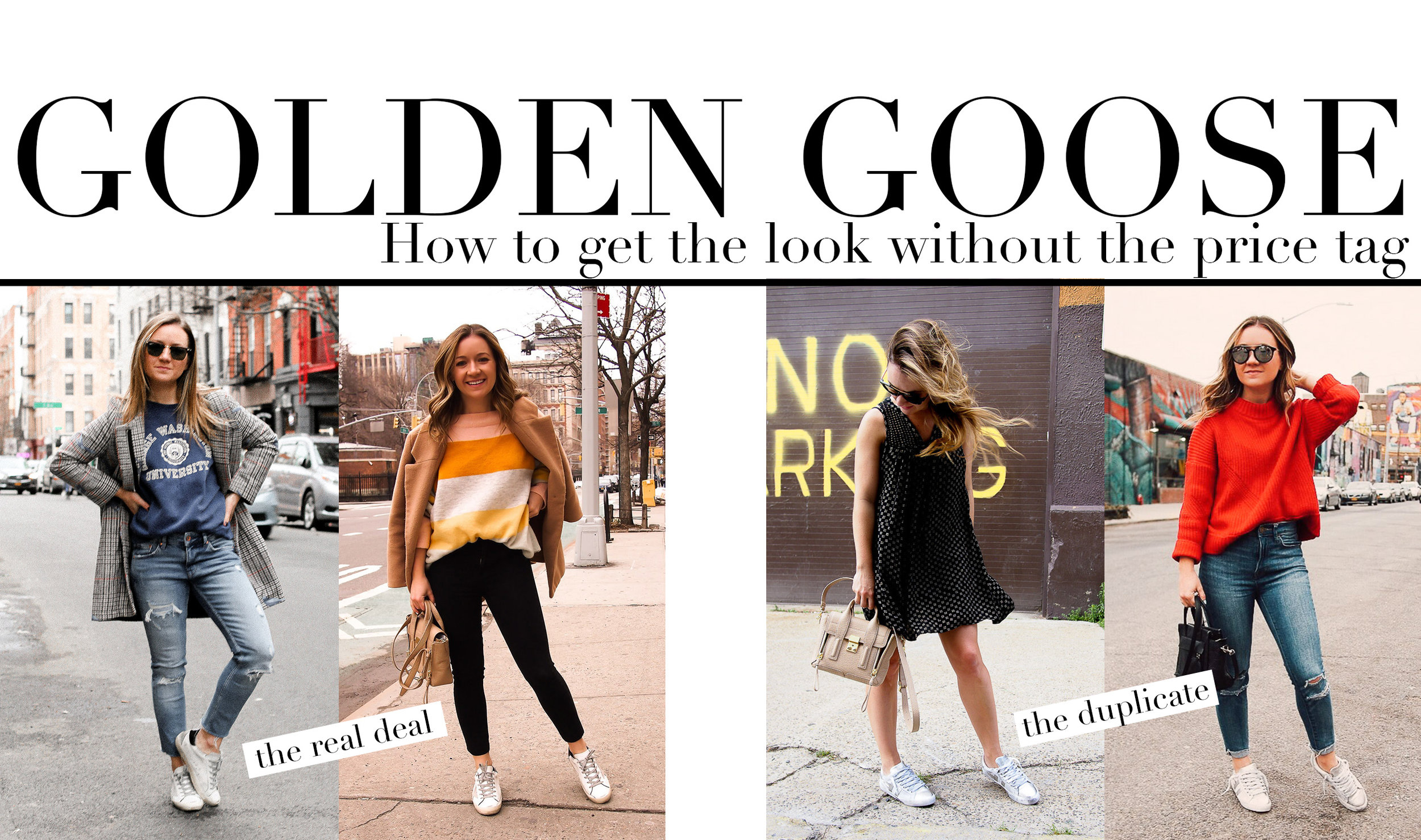 fizz-fade-golden-goose.jpg