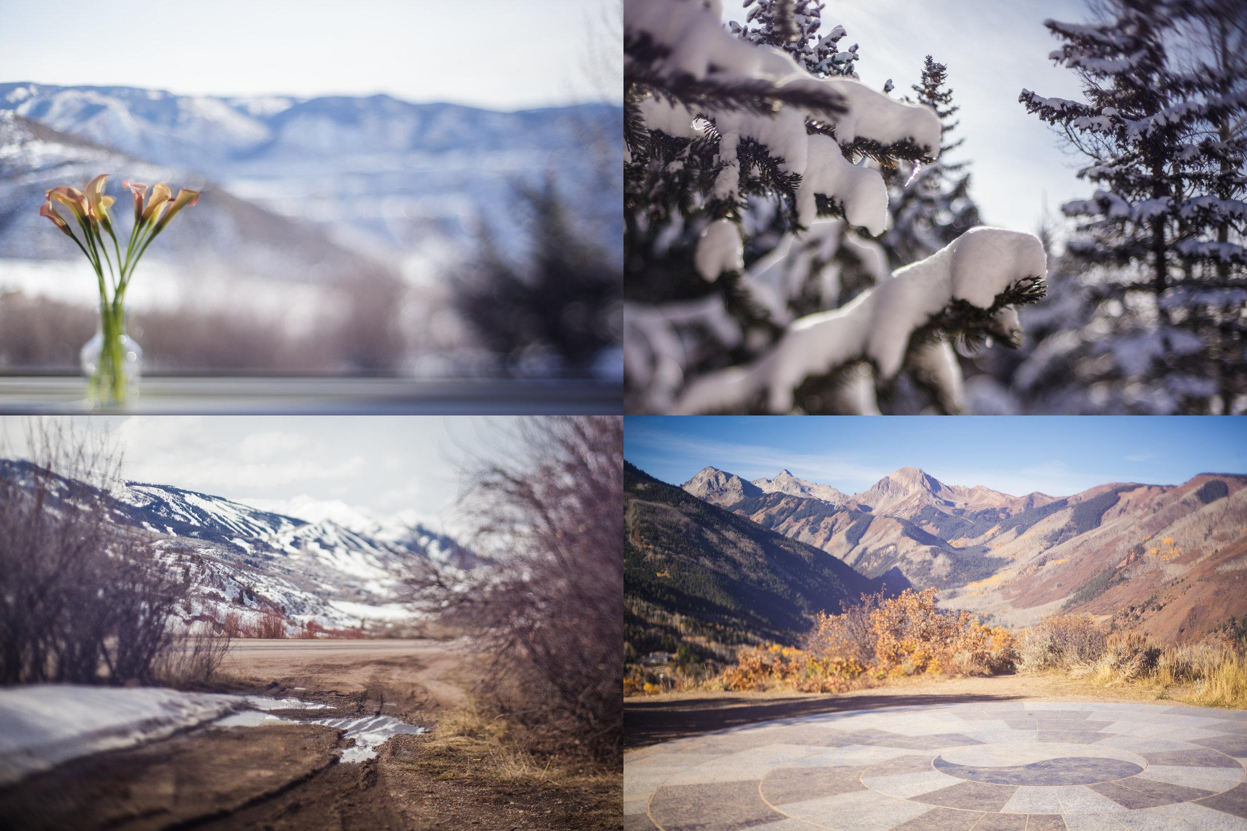 winterscenes.jpg