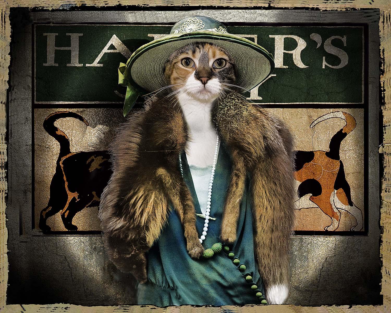 Miss Frumpy's Fox