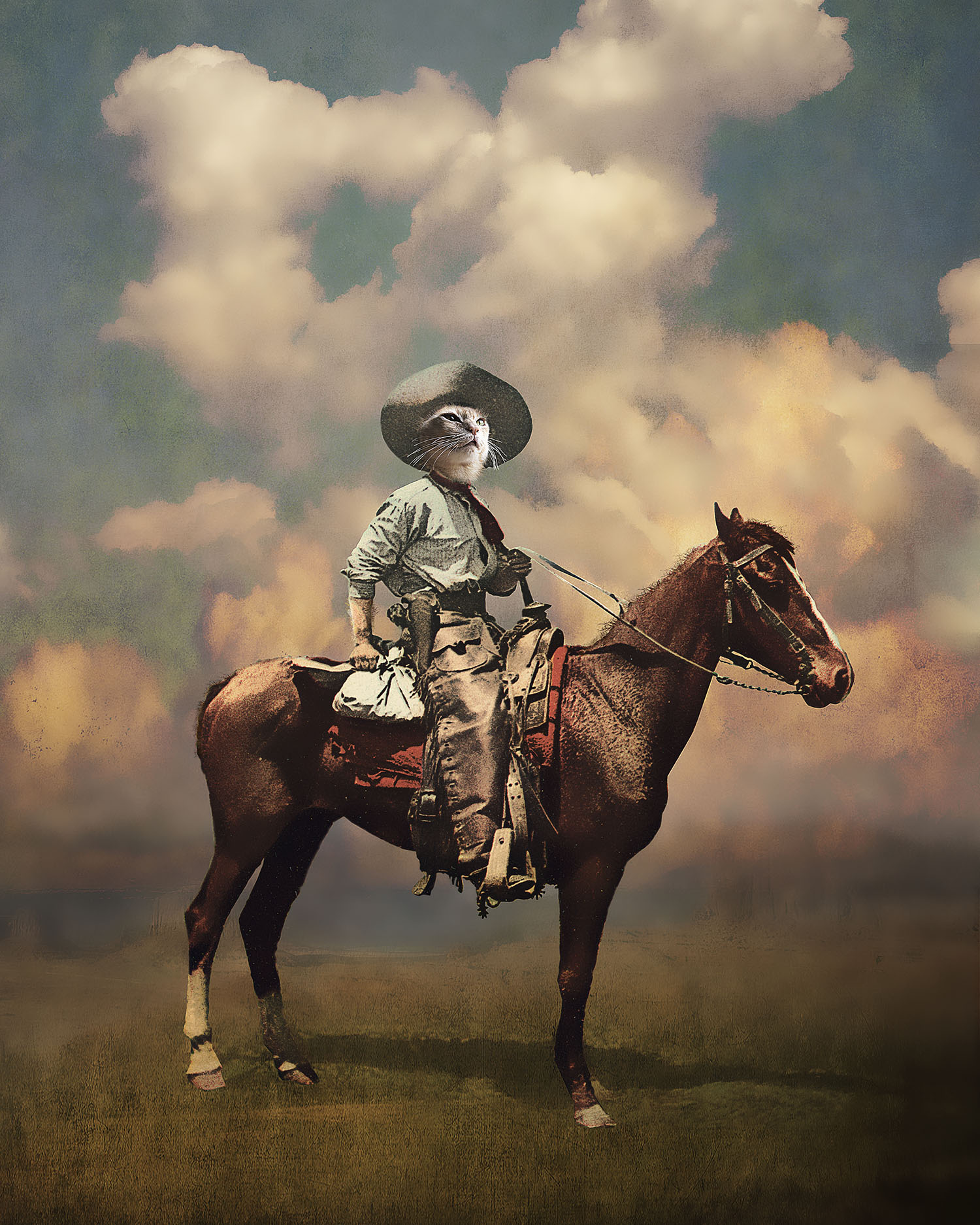 The Glorious Cowboy