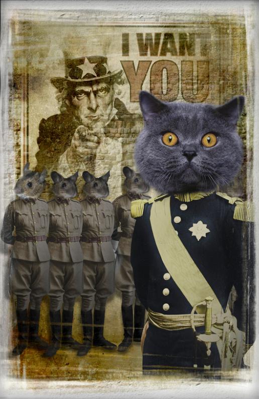 Field Marshal Pusant
