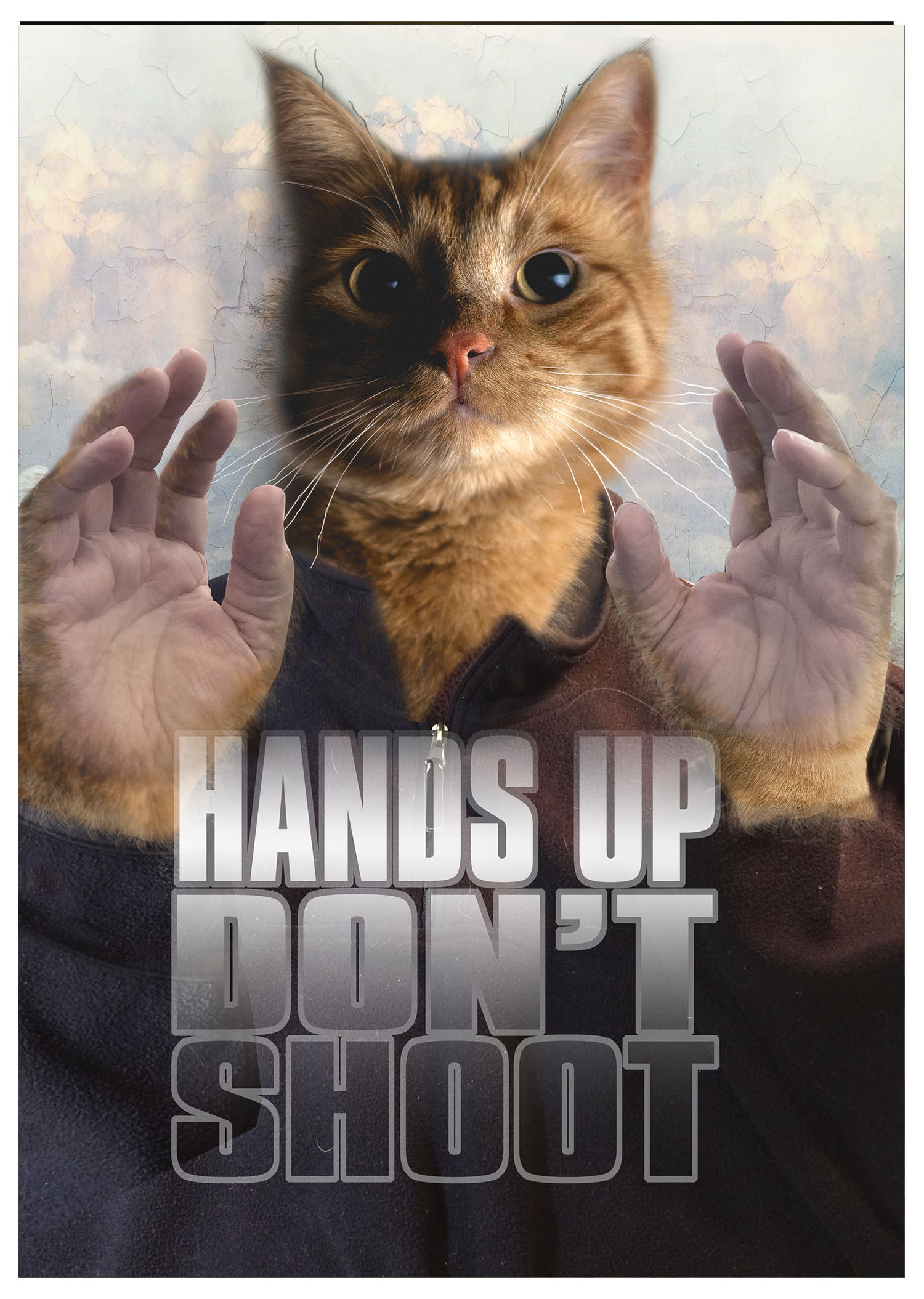 Hands Up - Don't Shoot