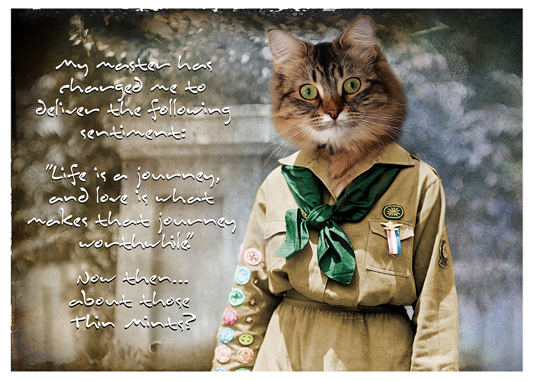 The Girl Scout