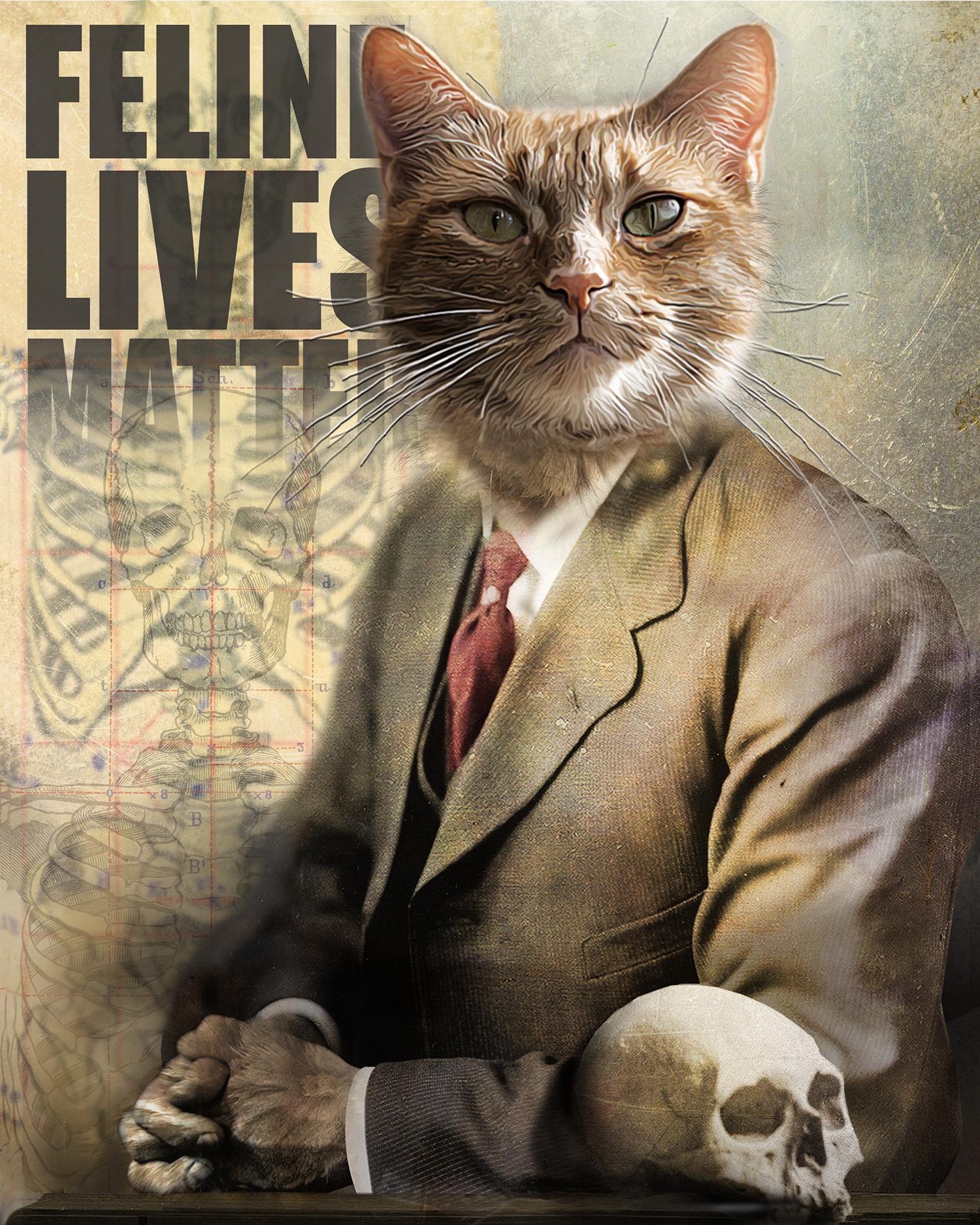 Feline Lives Matter