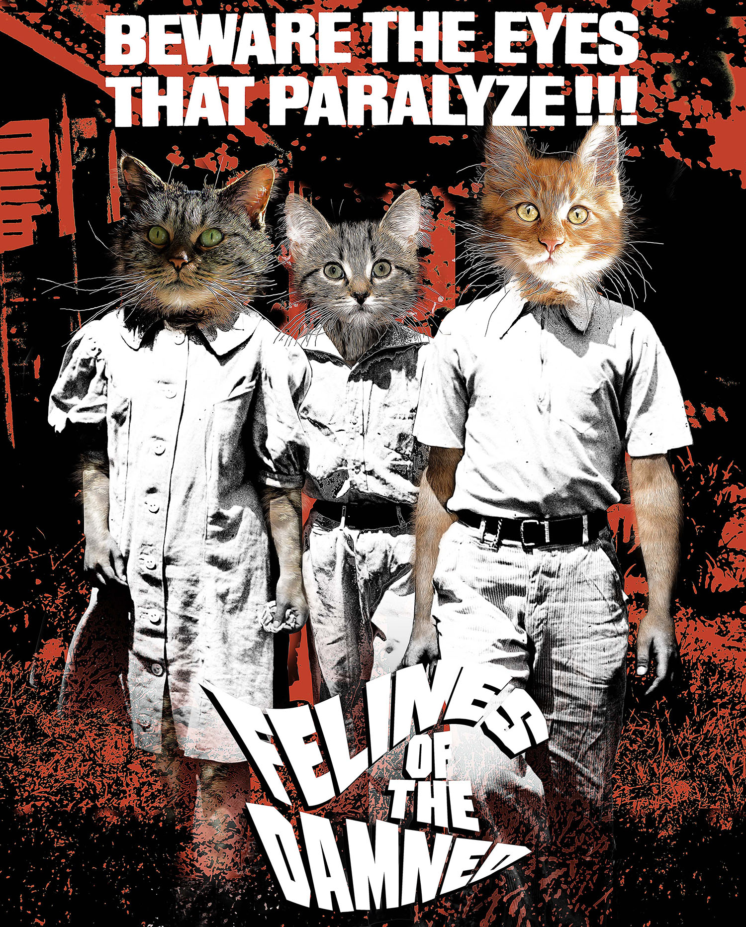 Felines of the Damned