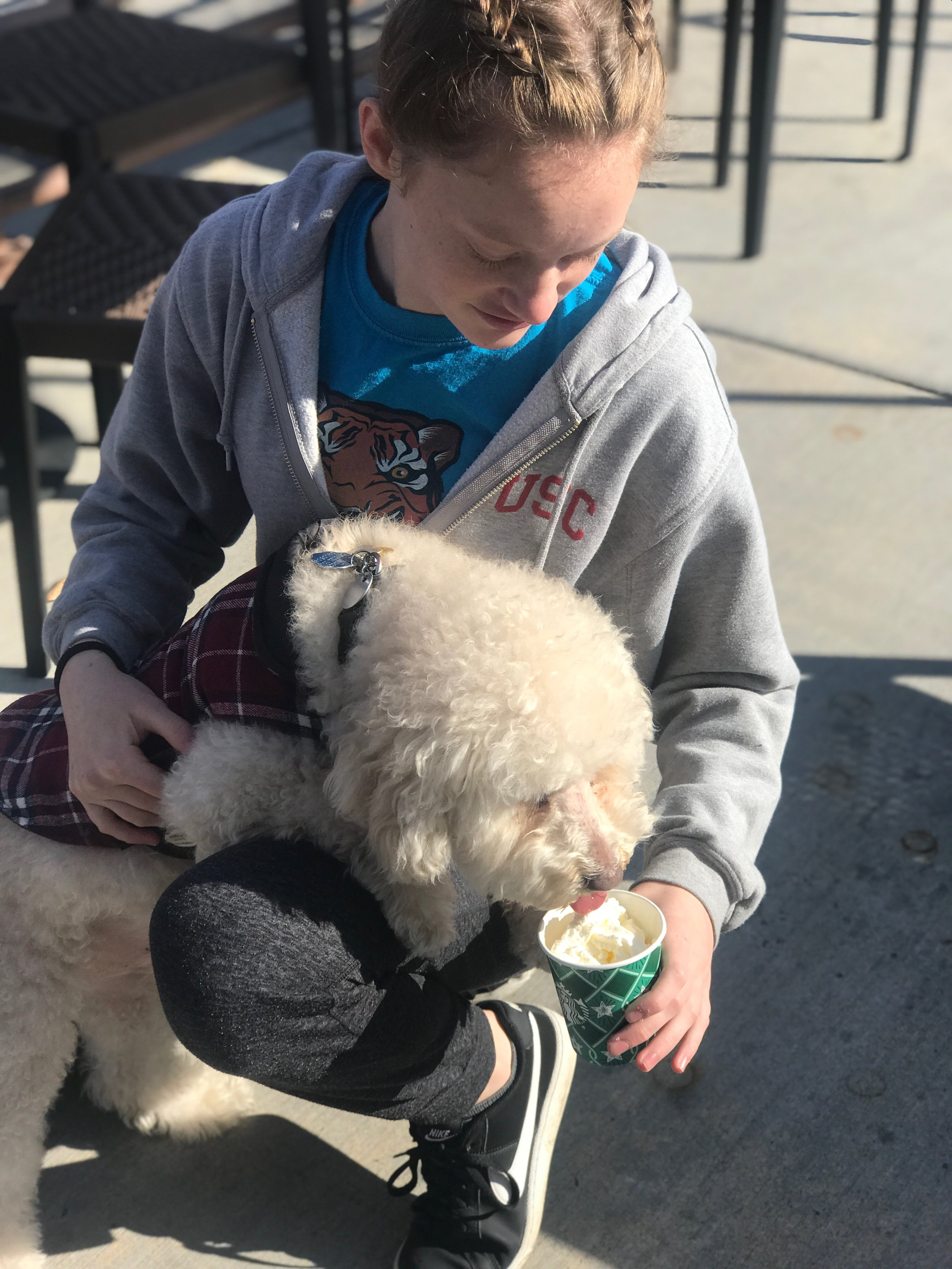 The Infamous Puppuccino