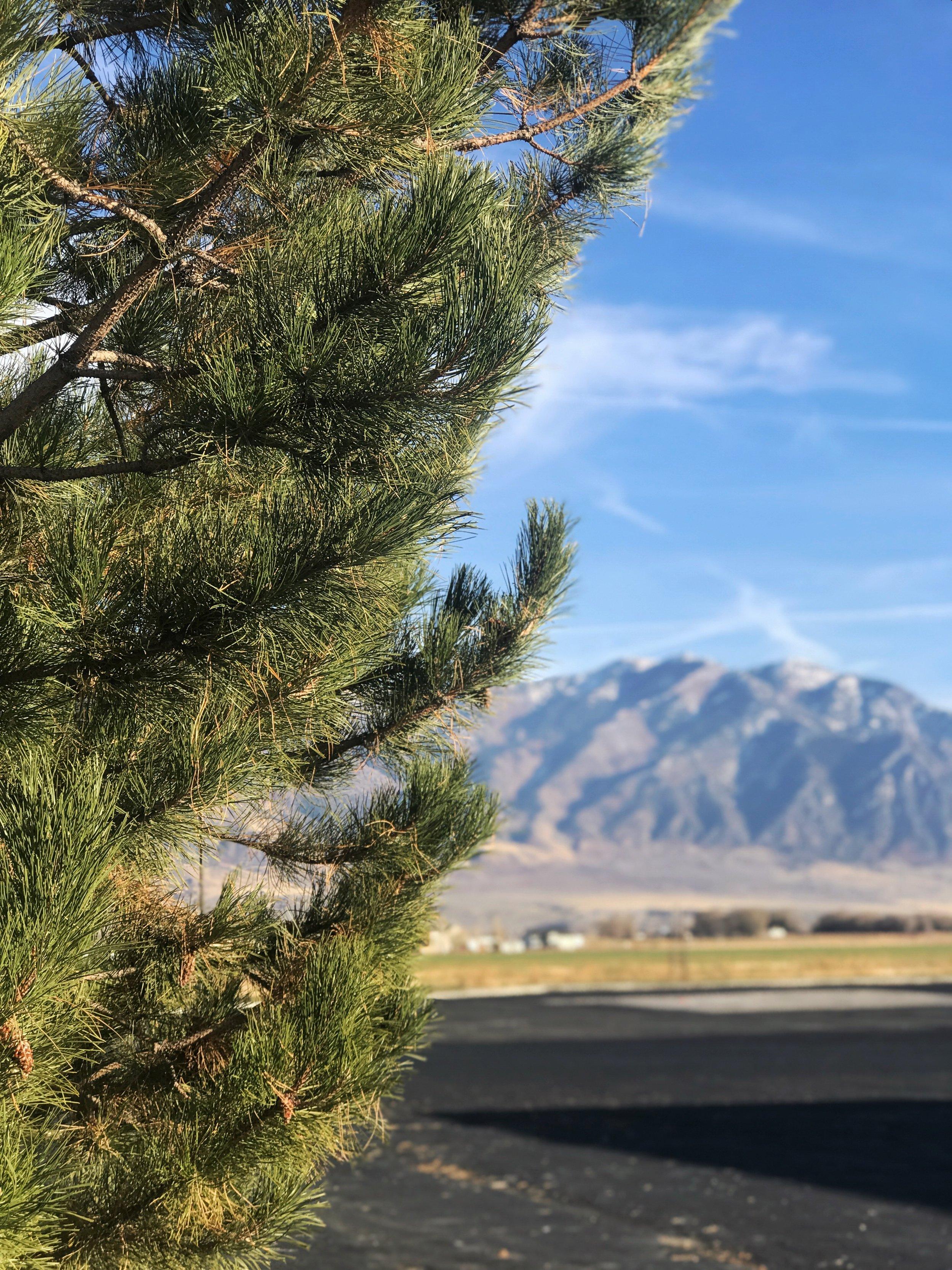 Northen Utah